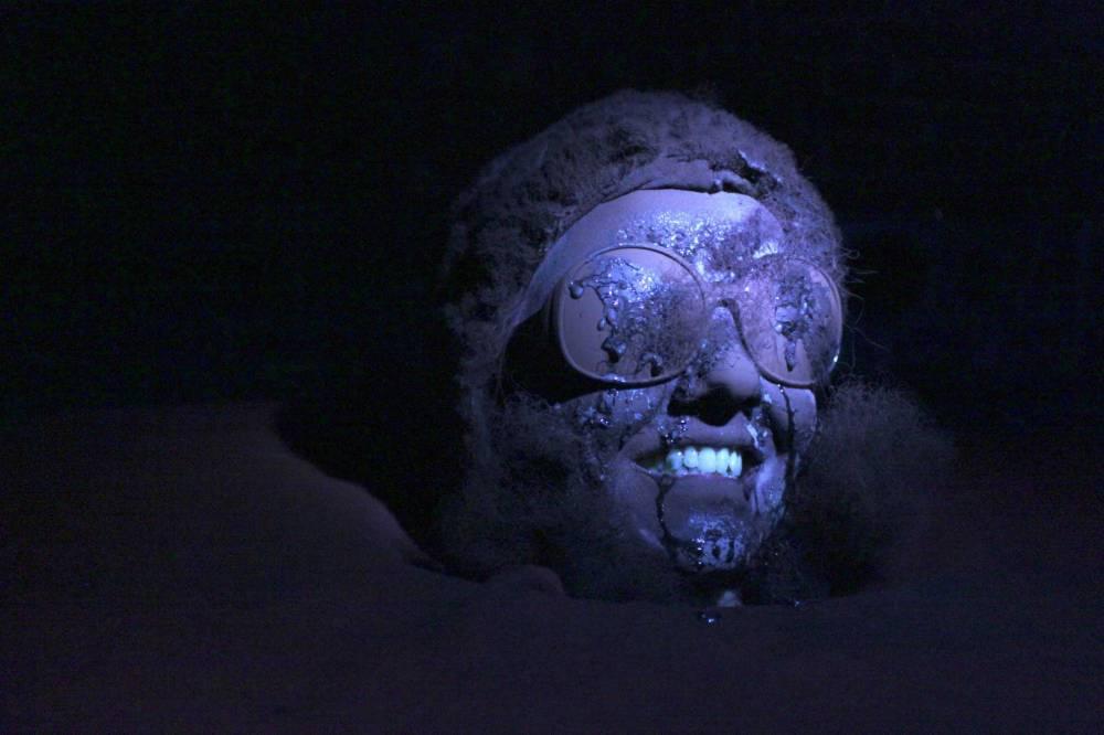 Kuva henkilöstä, jonka kasvot on peitetty karvalla